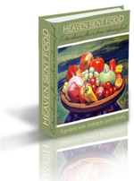 Heaven Sent Food - Solar Cooking Cookbook